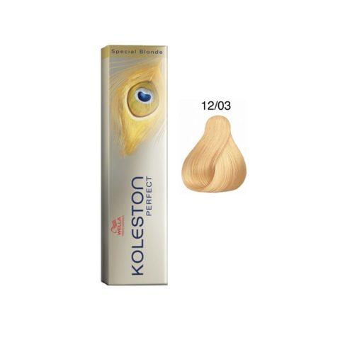 12/03 Natur Gold Dorato Wella Koleston Perfect Special Blonde