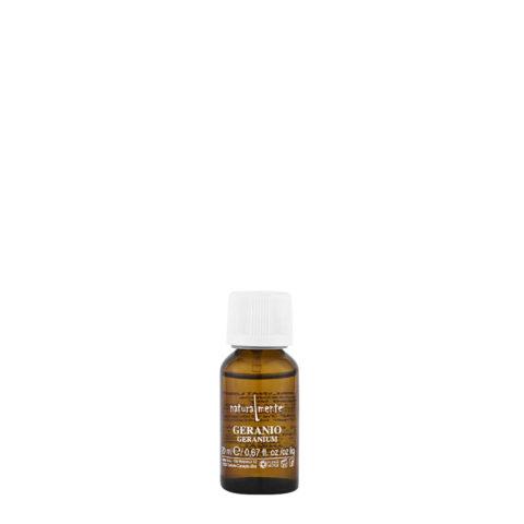 Naturalmente Essential oil Geranium 20ml