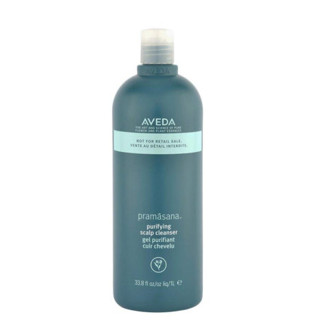 Aveda Haircare Pramasana Purifying Scalp Cleanser 1000ml - Cleanser für die Kopfhaut