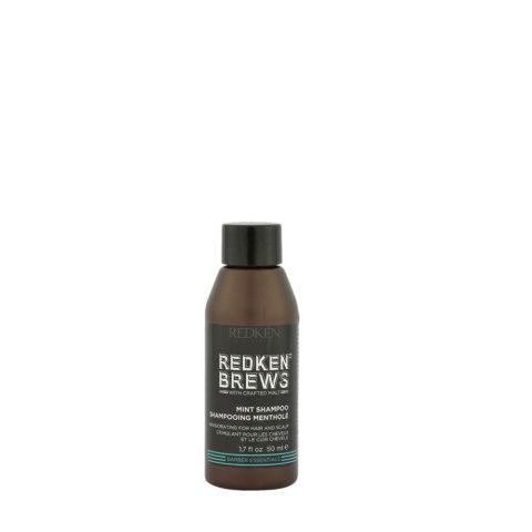 Redken Brews Man Mint Shampoo 50ml - erfrischendes Minz shampoo