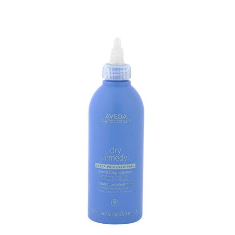 Aveda Dry remedy Penetrating moisture 250ml - super schnelle feuchtigkeitsspendende Behandlung
