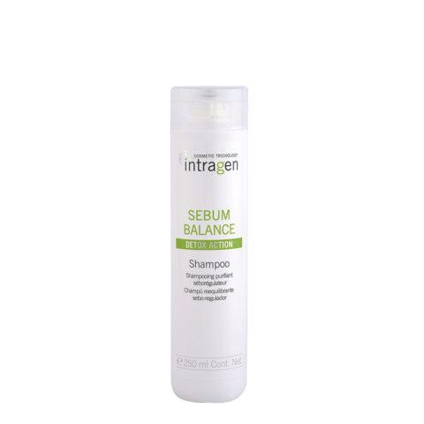 Intragen Sebum Balance Shampoo 250ml - Talg-regulierendes Shampoo