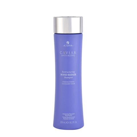 Alterna Caviar Restructuring Bond repair Shampoo 250ml - shampoo repair