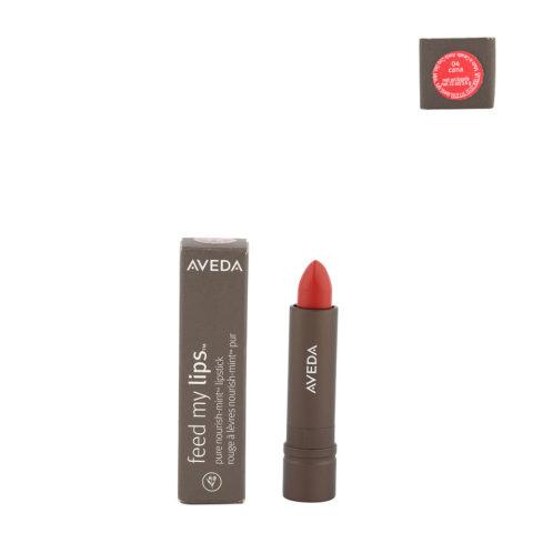 Aveda Feed my lips Pure Nourish Mint Lipstick 3.4gr Cana 04