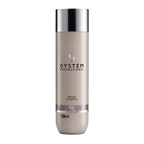 System Professional Repair Shampoo R1, 250ml - Shampoo Für Beschädigtes Haar