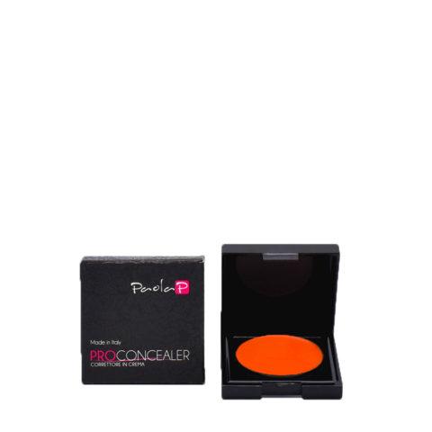 Paola P 09 Pro Concealer Creme Concealer 3gr