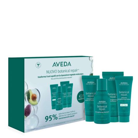 Aveda Botanical Repair Reise Pakket