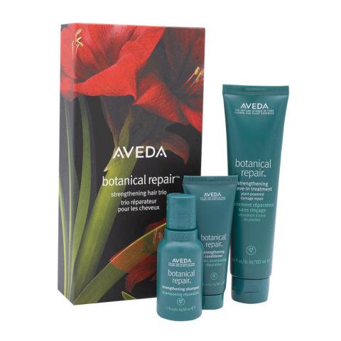 Aveda Botanical Repair Weichnachtsset Für Strapaziertes Haar