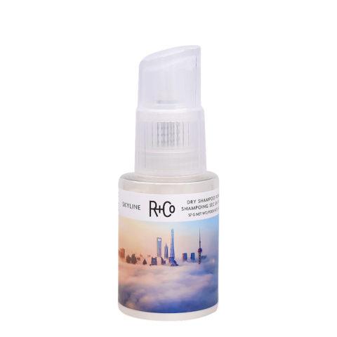R+Co Skyline Dry Shampoo Powder Volumenpulver 57gr