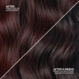 Redken Color Extend Magnetics Kit Shampoo 500ml und Conditioner 500ml - coloriertes Haar