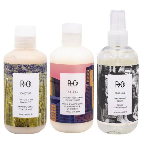 R+Co Dallas Kit für feines Haar Shampoo 177ml Conditioner 177ml Spray 241ml